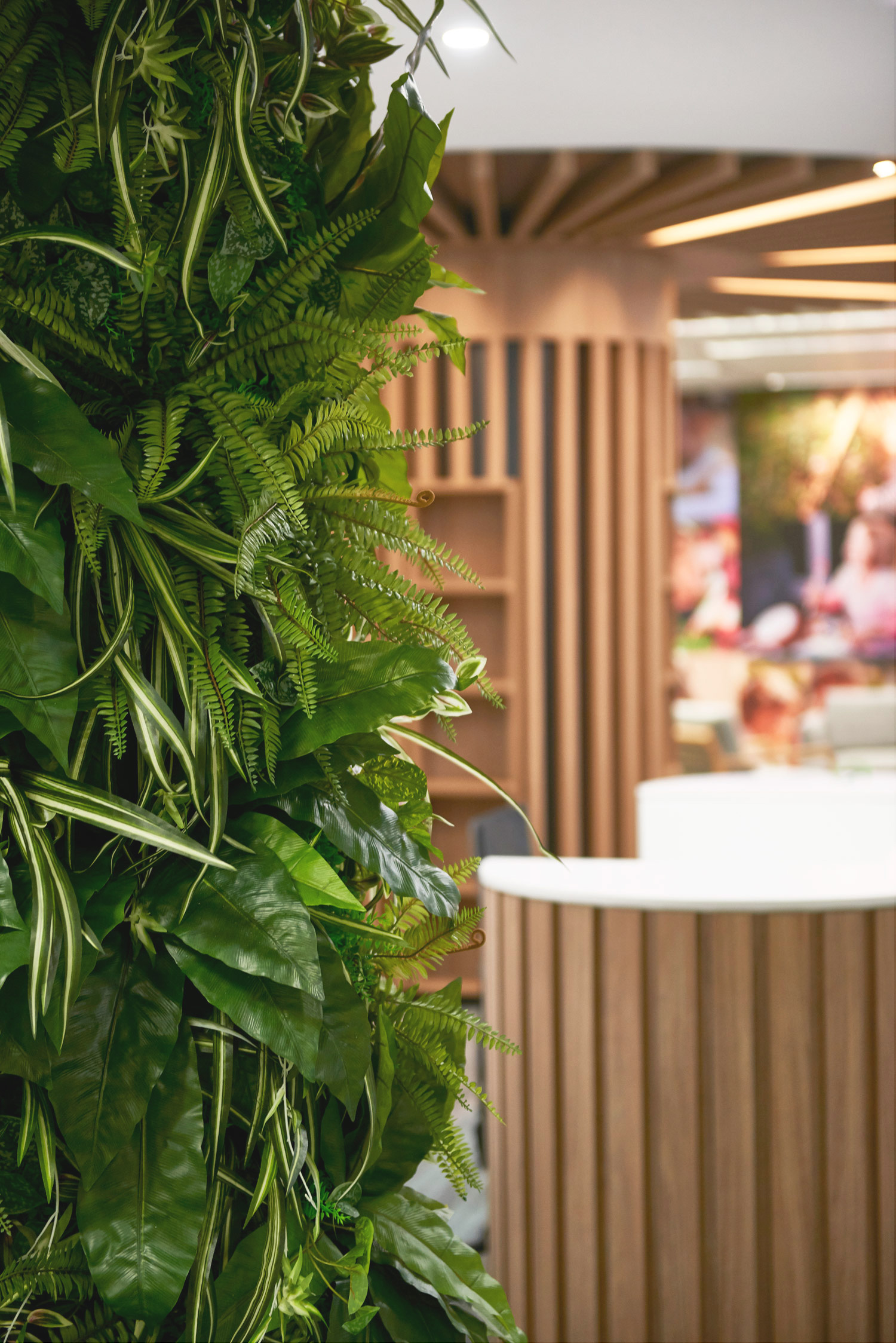 The Health and Benefits of a Vertical Garden